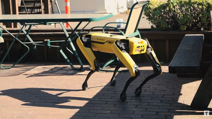 Pies robot od Boston Dynamics.