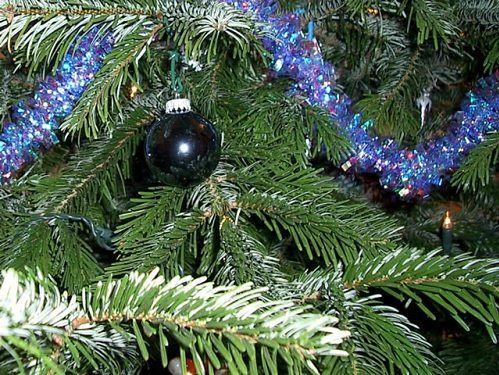 Eko Dekoracje świąteczne Gadżetomaniapl