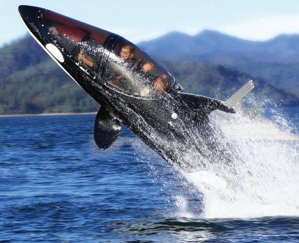 Seabreacher Y (Fot. Gizmag.com)