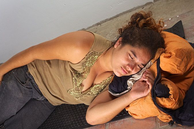 Zdjęcie dzikiej lokatorkipochodzi z serwisu shutterstock.com