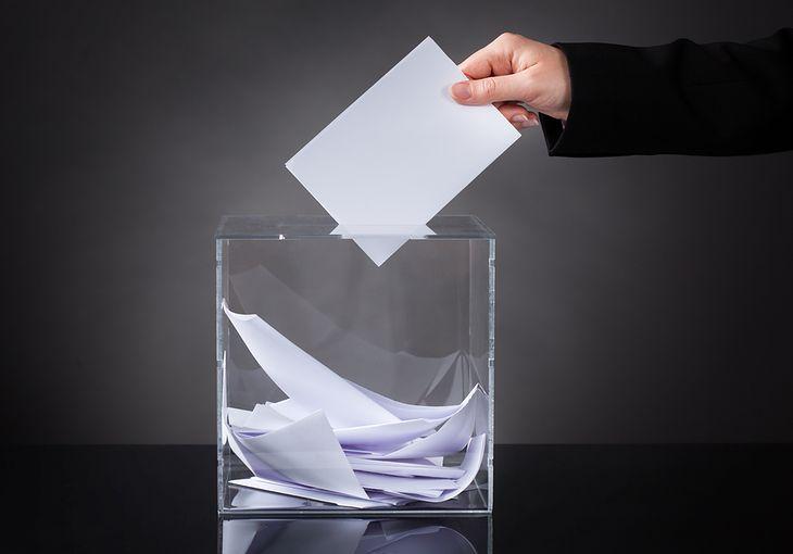 Zdjęcie urny pochodzi z serwisu Shutterstock.
