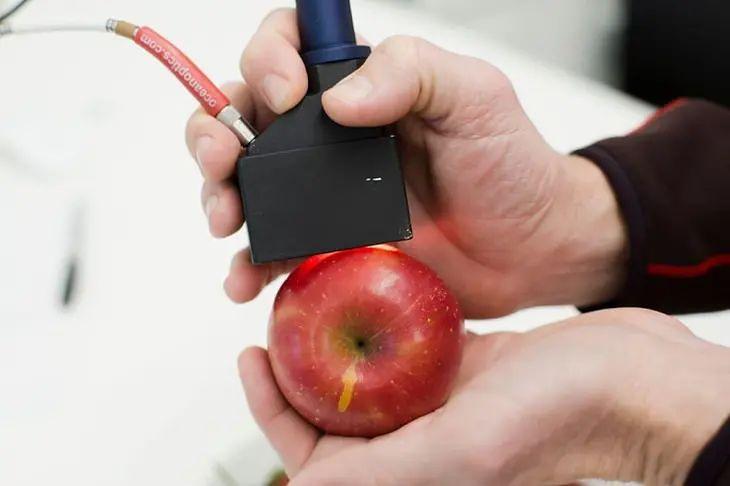 Skaner pozwoli sprawdzić świeżość produktów