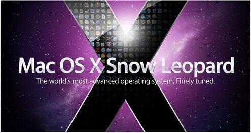 snowleopard1-495x264