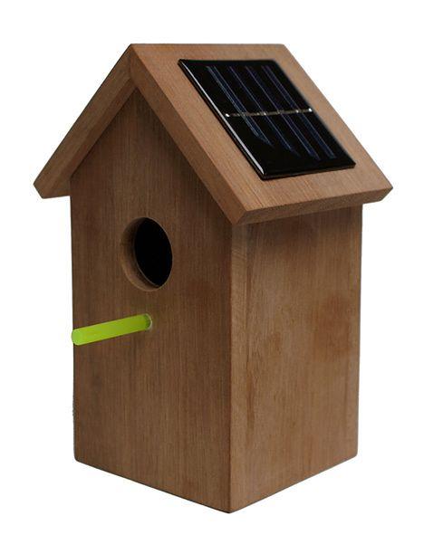 solarbirdhouse2