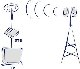 Rys. http://www.vector.com.pl