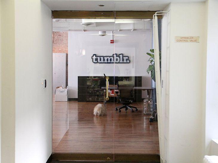 Siedziba Tumblra w Nowym Jorku (Fot. BusinessInsider.com)