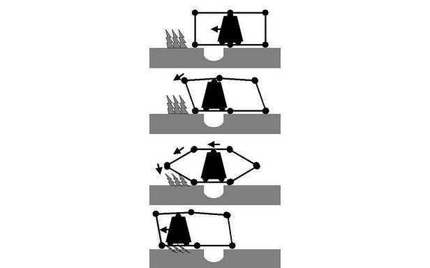 Diplodocus militaris - zasada działania