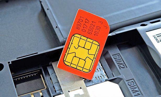 Dual-Sim / źr. 123rf.com
