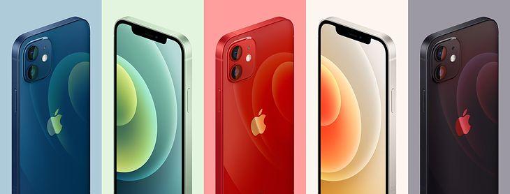 Oto kolory iPhone'a 12 i 12 mini