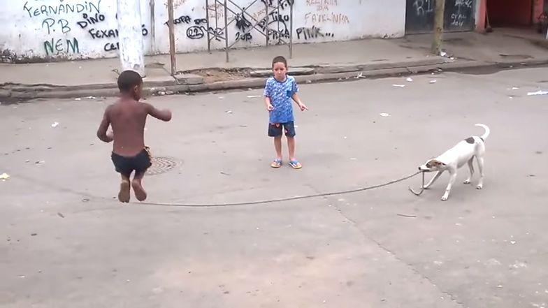 Brazylijski kundel bawi się z dziećmi