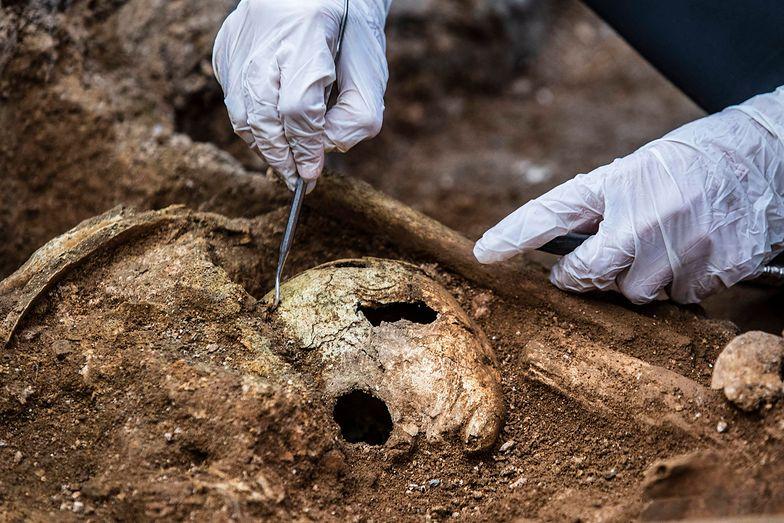 Badali centrum Rybnika. Archeolodzy odkryli mroczną tajemnicę