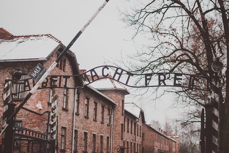 Jeden na dwudziestu Brytyjczyków twierdzi, że Holokaustu nie było