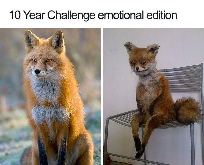 10 Year Challenge, wersja emocjonalna