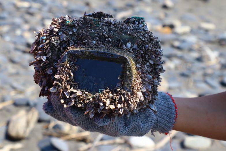 Zgubiła aparat w wodzie. Ponad dwa lata później morze wyrzuciło go w innym miejscu świata