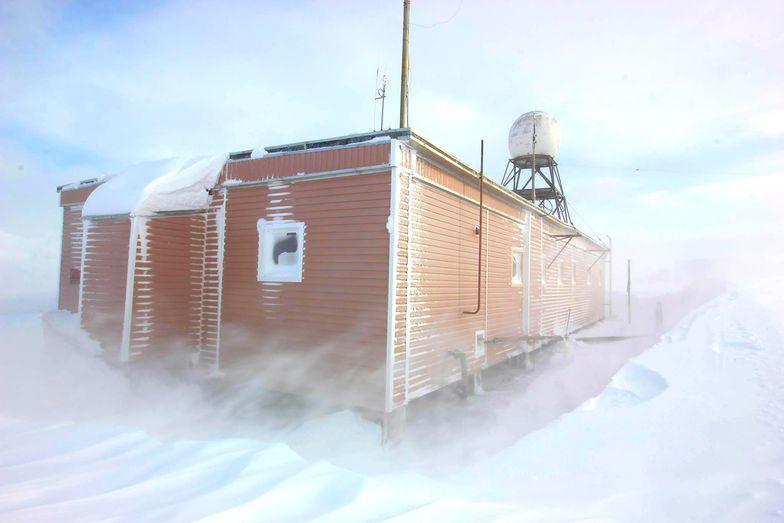 Dramat na Antarktydzie. Rosjanin oskarżony o próbę zabójstwa
