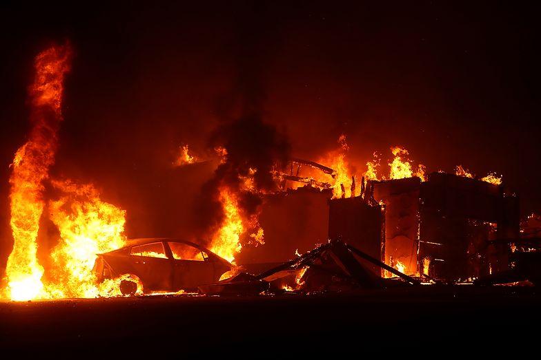 Zginęli zamknięci w aucie. Krwawe żniwo pożarów w Kalifornii