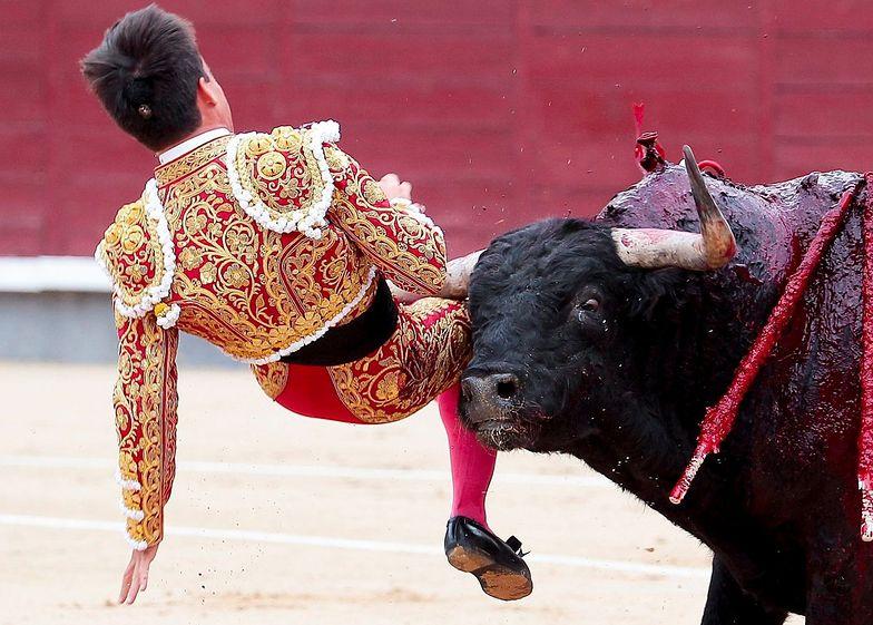 hiszpania madryt matador