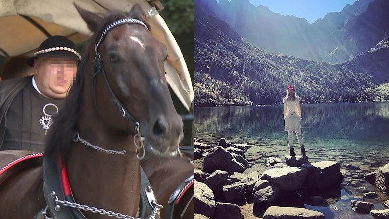 Konie z Morskiego Oka będą jeździć JESZCZE DŁUŻEJ!
