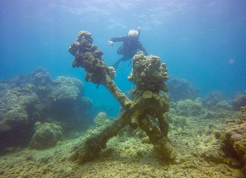 Wielka Rafa Koralowa odsłoniła relikt. Mógł należeć do Napoleona