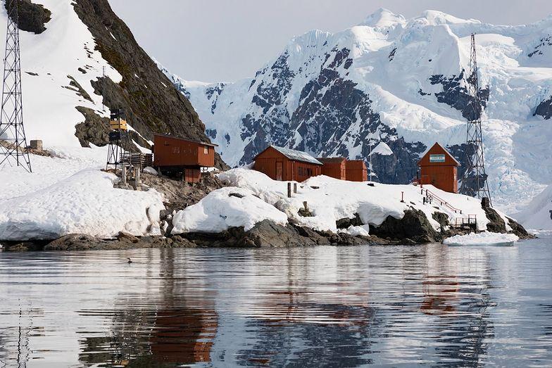 Mózgi naukowców skurczyły się podczas pobytu na Antarktydzie. Zaskakujące wyniki badań