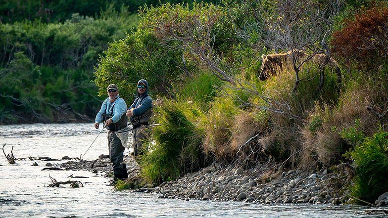 Nieświadomi zagrożenia łowili ryby. Tuż za nimi czaił się niedźwiedź