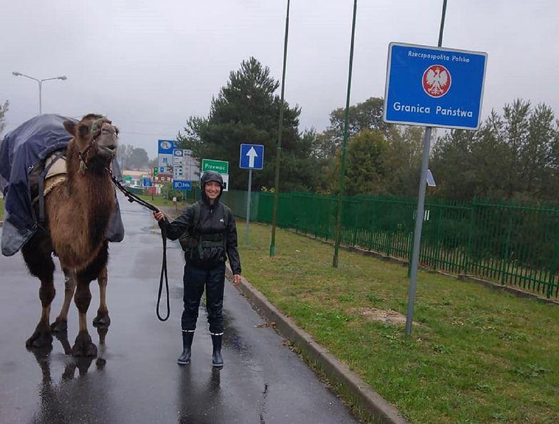 22-letnia Francuzka idzie z wielbłądem przez Polskę. Prosi o pomoc