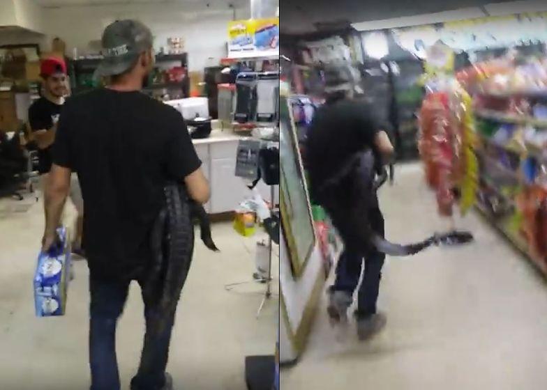Wszedł z aligatorem do sklepu w USA. Zaskakująca reakcja klientów