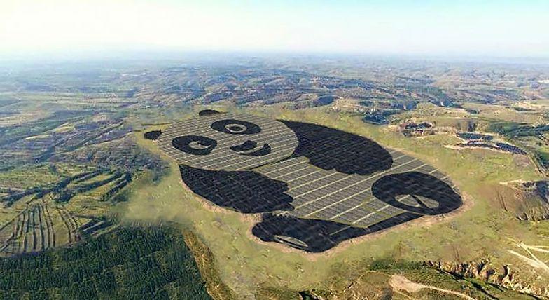 """""""Elektrownia Panda"""". Chińczycy w niezwykły sposób uczcili ulubione zwierzę"""