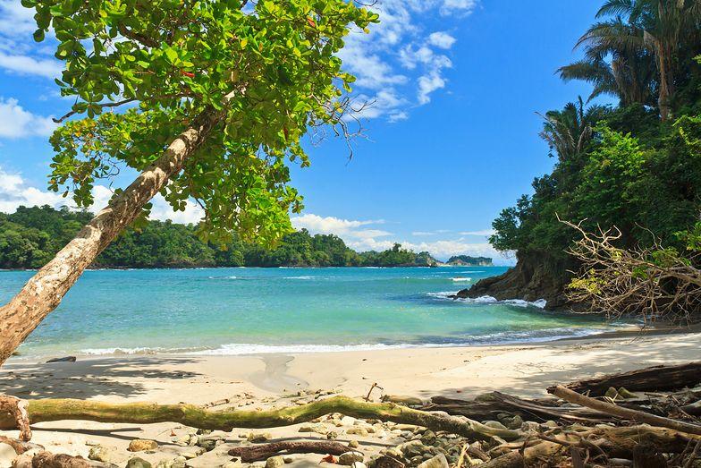Kostaryka. Co najmniej 19 osób nie żyje po spożyciu skażonego alkoholu