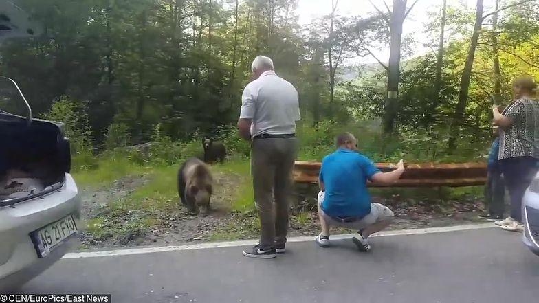 Szokujące nagranie turystów w Rumunii. Dzieci karmiły dzikie niedźwiedzie