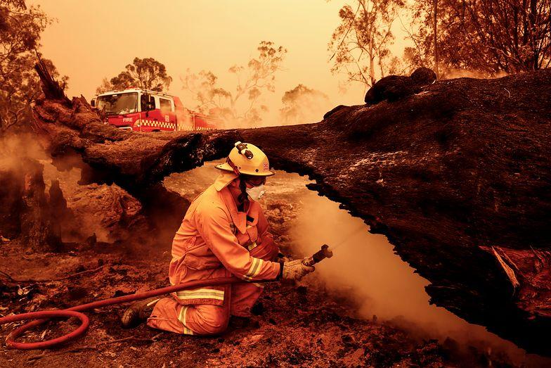 Australia dotknięta kataklizmem. Bohaterowie kończą w szpitalu lub kostnicy