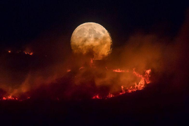 Apokalipsa w Suddleworth Moor