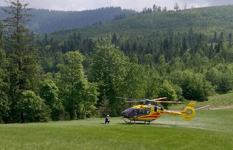 Coraz więcej wypadków w górach