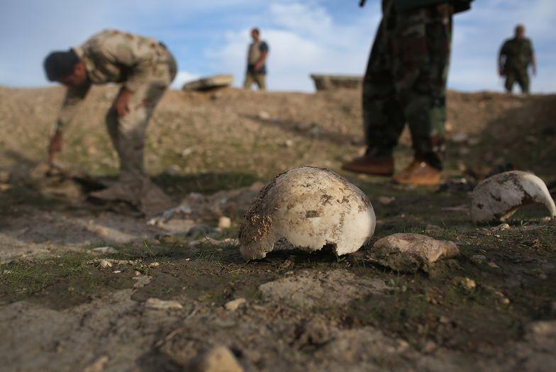 Znaleźli masowy grób. 3 tys. ofiar meksykańskich karteli narkotykowych zamordowanych kwasem