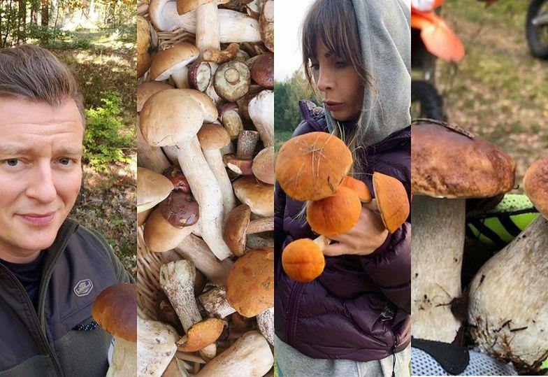 Dumni celebryci chwalą się dorodnymi grzybami