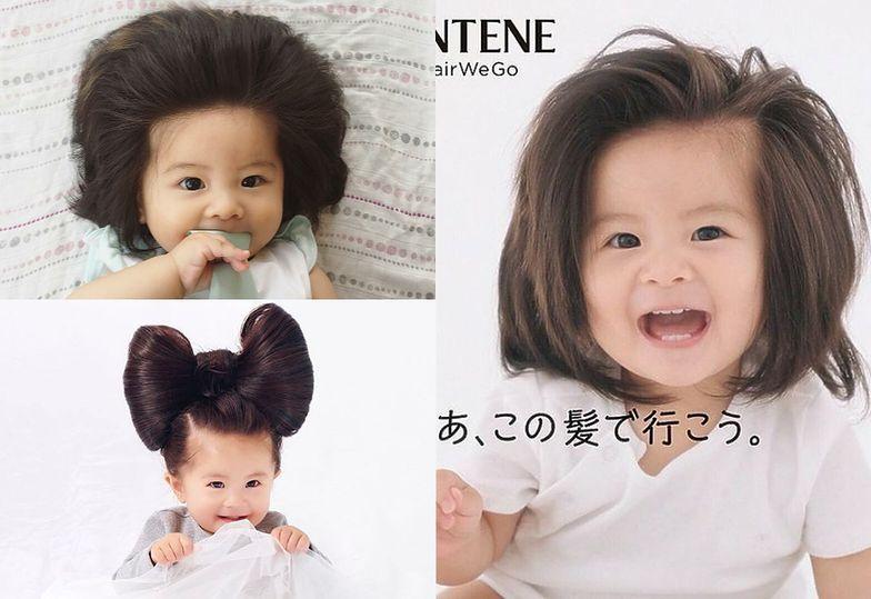 """Oto """"Baby Chanco"""", roczna gwiazdka Instagrama z Japonii"""