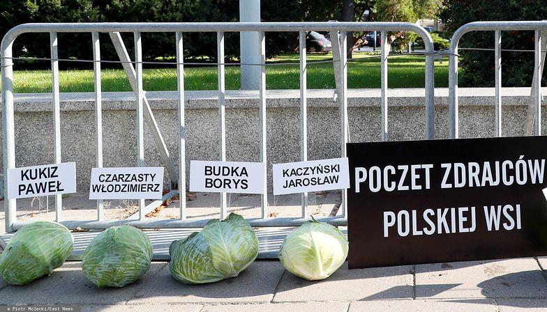 """Rolnicy przeciw """"piątce dla zwierząt"""". Położylipod Sejmem 356 główek kapusty"""