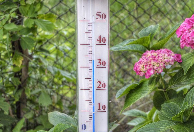 Pogoda długoterminowa. 30 stopni we wrześniu? Sprawdź, co nas czeka