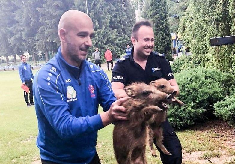 Polacy mają wielkie serca. Tak pomagają zwierzętom