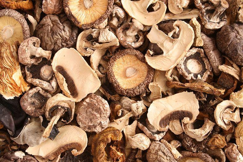 Zjedli suszone grzyby. Wielu zakażonych