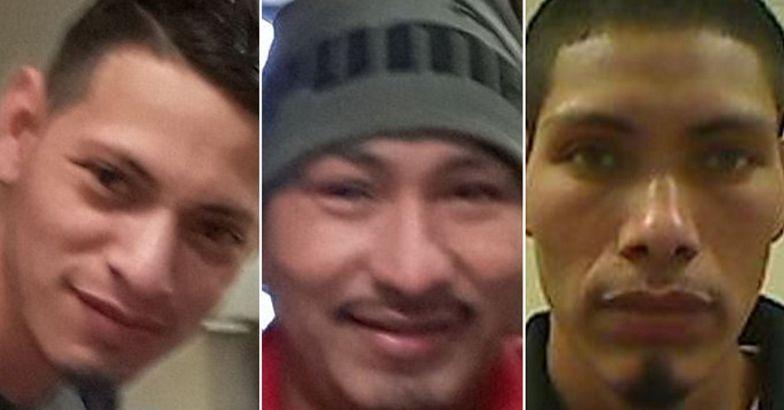 Horror w USA. Trzech braci zgwałciło 10-latkę