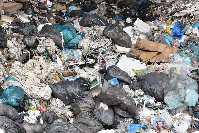 Niemcy przywiozą do Polski mnóstwo śmieci. Ponad 40 tysięcy ton!