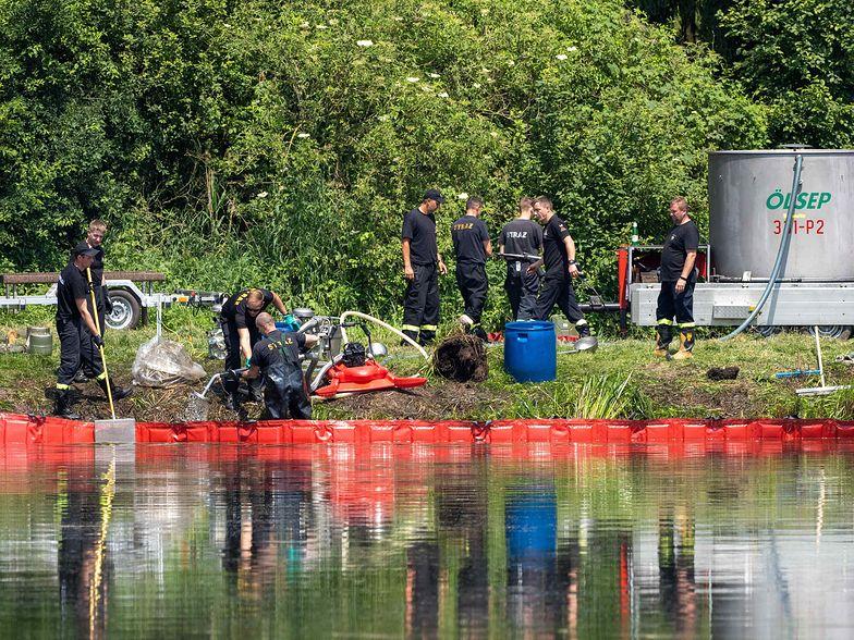 Katastrofa ekologiczna pod Łodzią. Wędkarze odkryli przyczynę