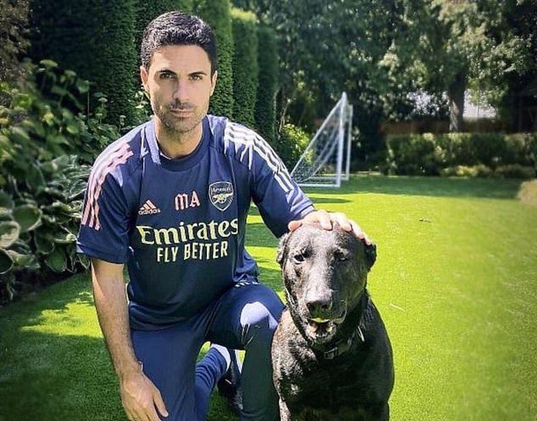 Pies obronny za... 100 tys. złotych. Trener Arsenalu nie oszczędzał