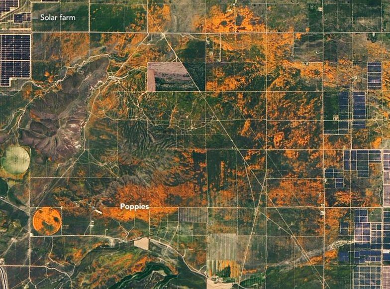 Kalifornia. Widok ze zdjęć satelitarnych NASA.