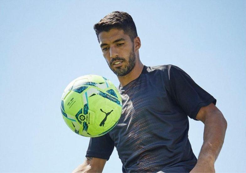 Luis Suarez zdał egzamin z włoskiego. Szokujące pytania