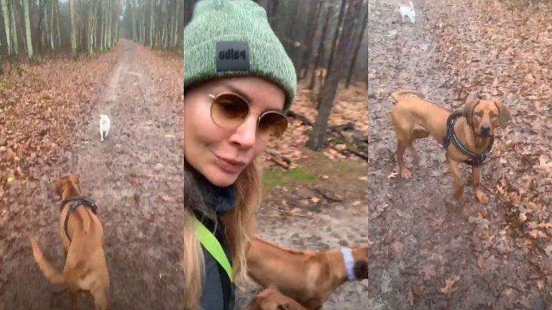 """Uśmiechnięta Agnieszka Woźniak-Starak spaceruje z psami po lesie i zachęca: """"Chodźcie na spacery i miejcie psy"""" (FOTO)"""