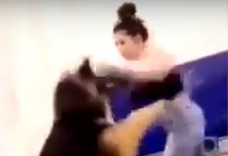 Kobieta biła psa w rękawicach bokserskich. Została oskarżona.