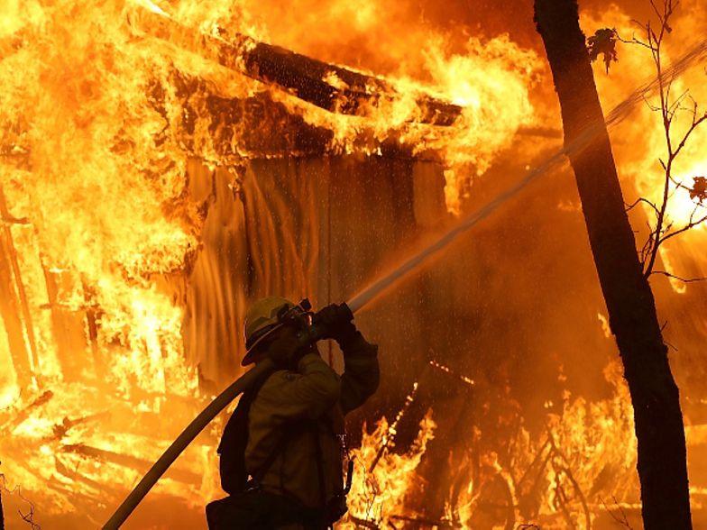 Pożary w USA. Donald Trump wskazał, kto ponosi za nie odpowiedzialność