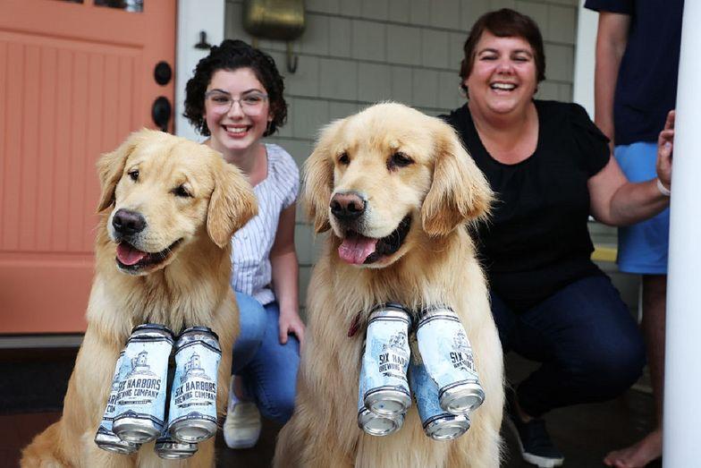 Psy pomagają właścicielom dostarczać piwo w trakcie epidemii koronawirusa.